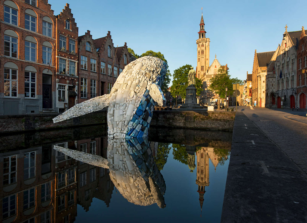 Bruges Whale photo by Chuck Choi WEB.jpg