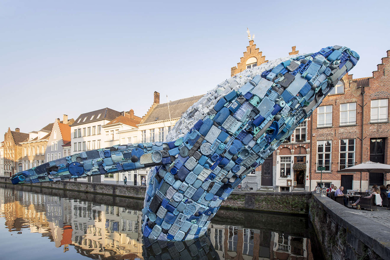 Bruges Whale pic by Matthias Desmet WEB.jpg