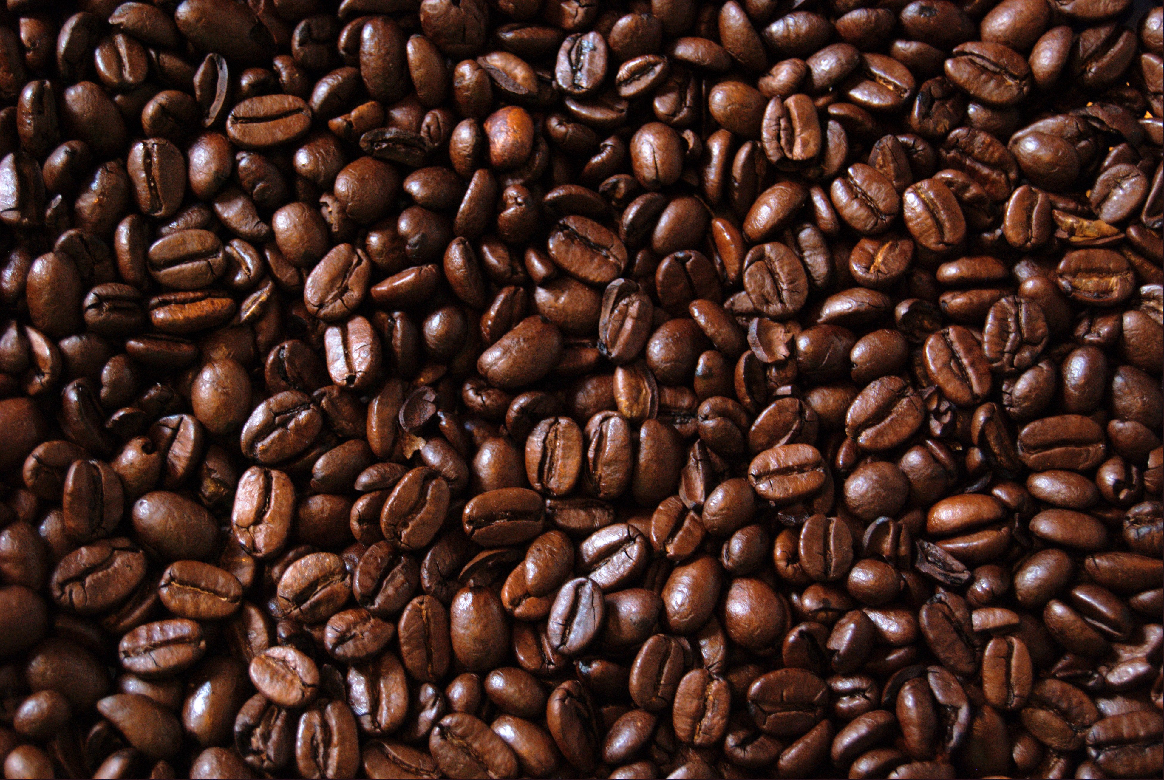 JavaCycle Partners with MZB to Turn Coffee Bean Waste into ...