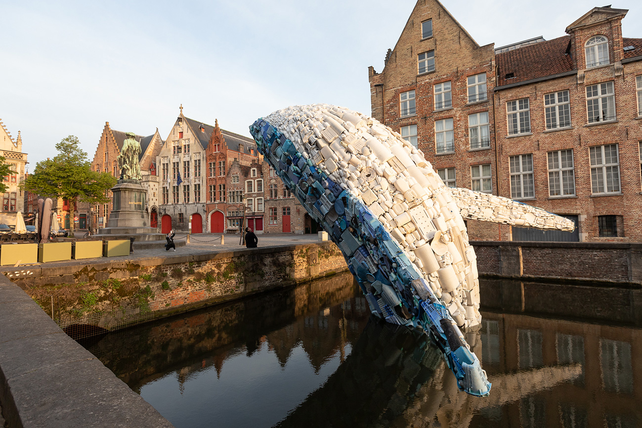 Whale closeup with buildings by Matthias Desmet WEB.jpg