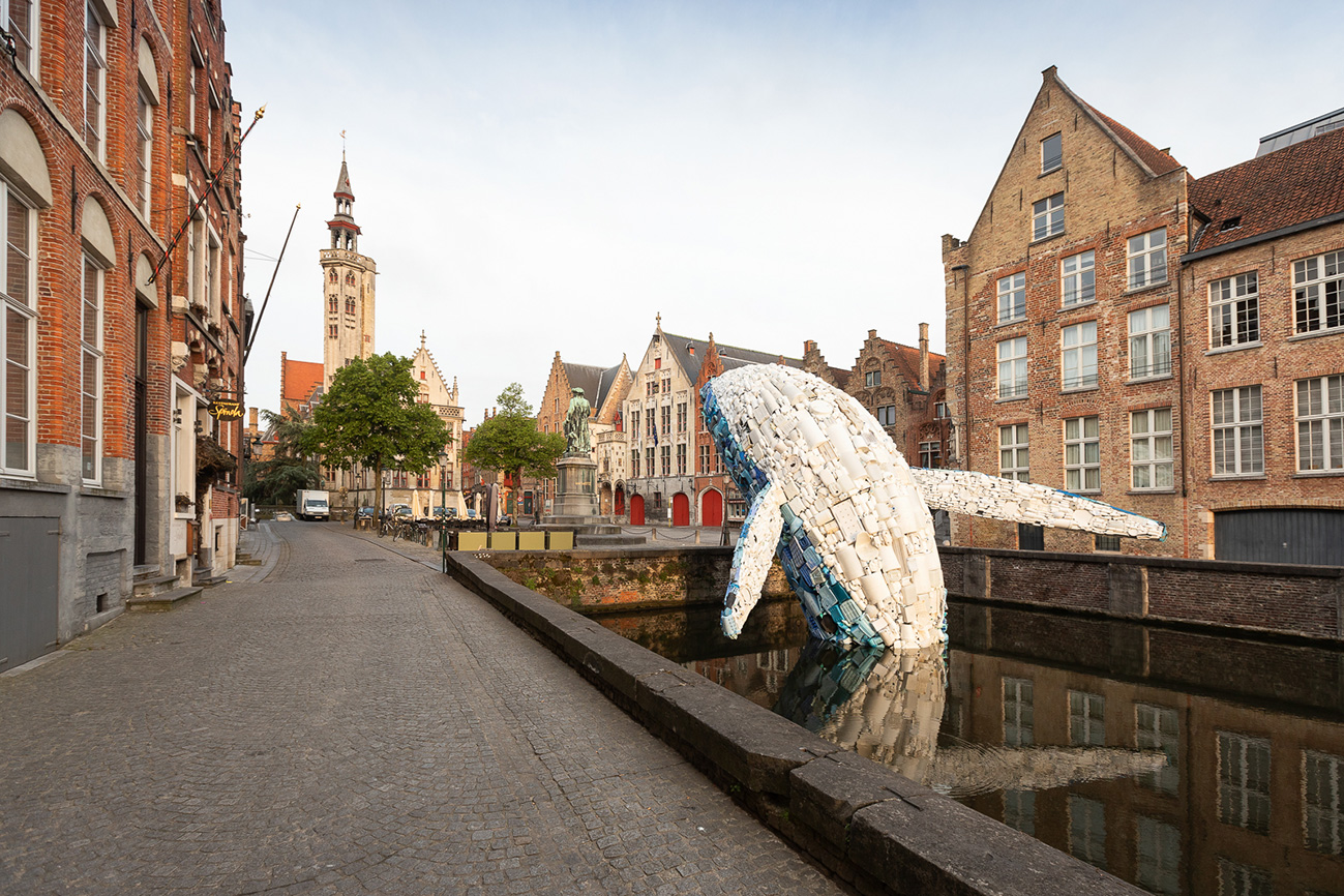 Whale with buildings farther pic by Matthias Desmet WEB.jpg