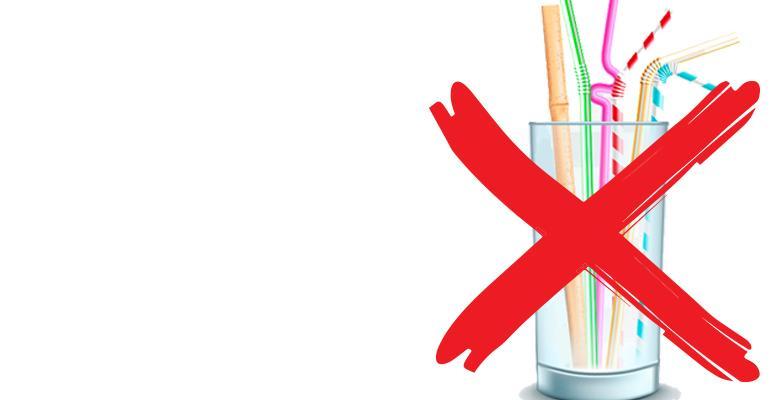 Anti Plastic Straw