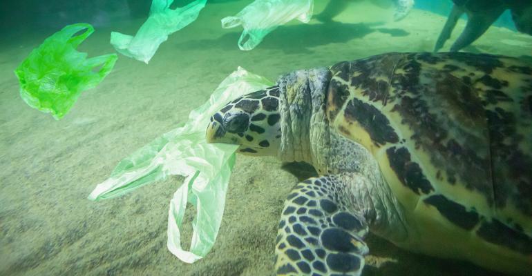 plastic waste ocean