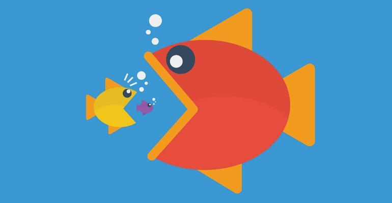big fish east little fish