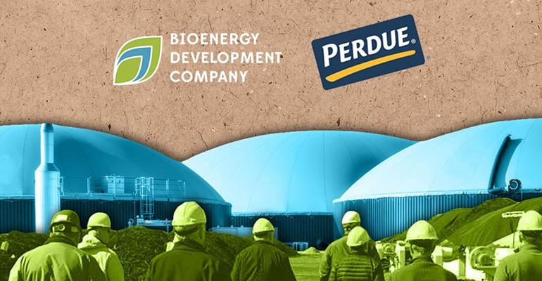 Bioenergy DevCo Enters into 20-year Partnership with Perdue Farms