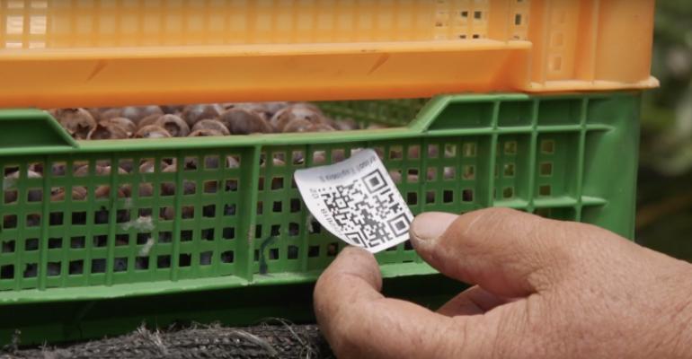 blockchain-food-waste-2.jpg