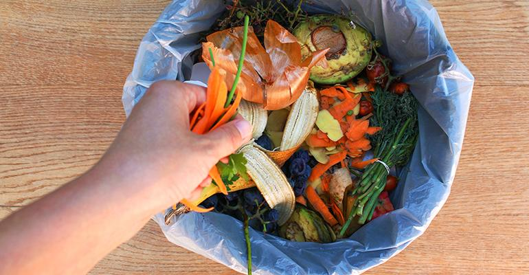 Report Targets NYC's Organics Waste Program