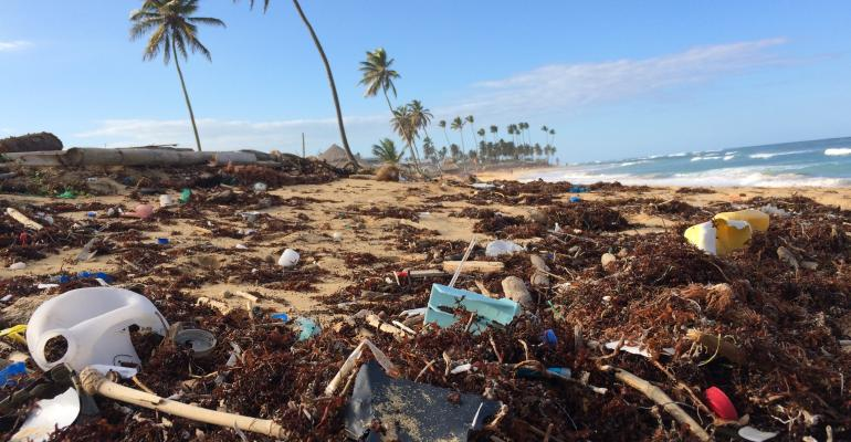 plastic waste nature