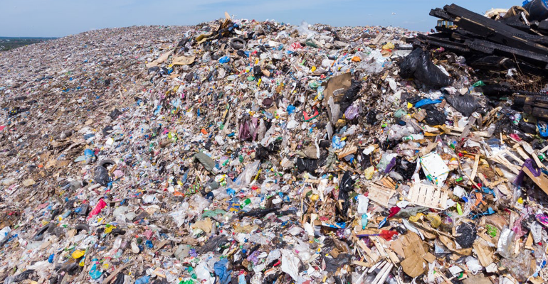 landfill3feat.png
