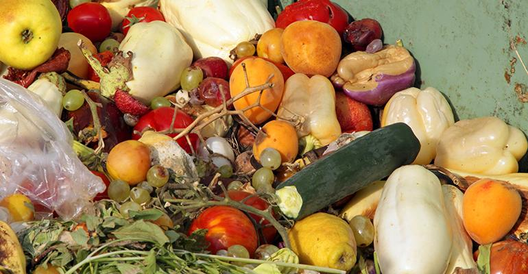 organics composting study