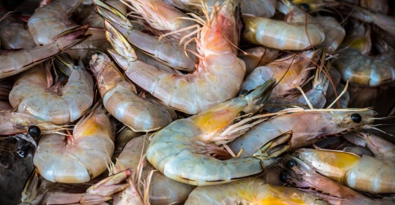 University Bioengineers Develop Plastic Bags Made From Shrimp Shells
