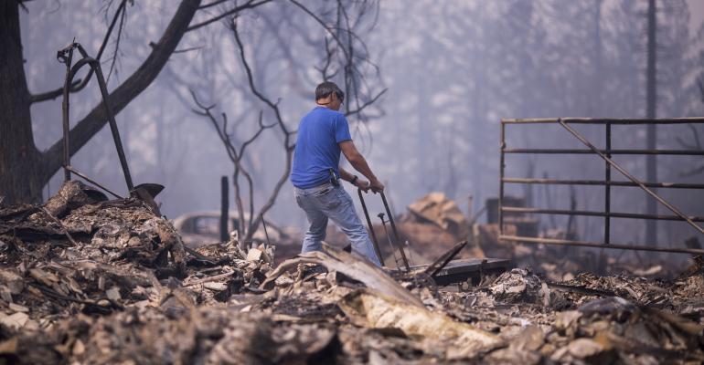 wildfire debris