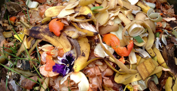 NYC Food Waste Fair Returns in 2021 with Toolkit In Hand