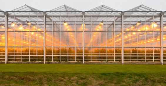 Vermont Landfill Plans to Build Greenhouses Powered by Geothermal Heat