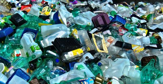 OECD Urges Government to Encourage Better Recycling of Plastics