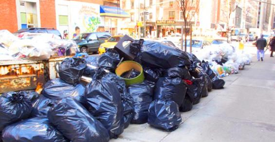 Biodegradable and Compostable Trash Bags Help Reduce Plastic Use