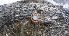 Mortality Composting Provides Disposal Solution for Animal Carcasses